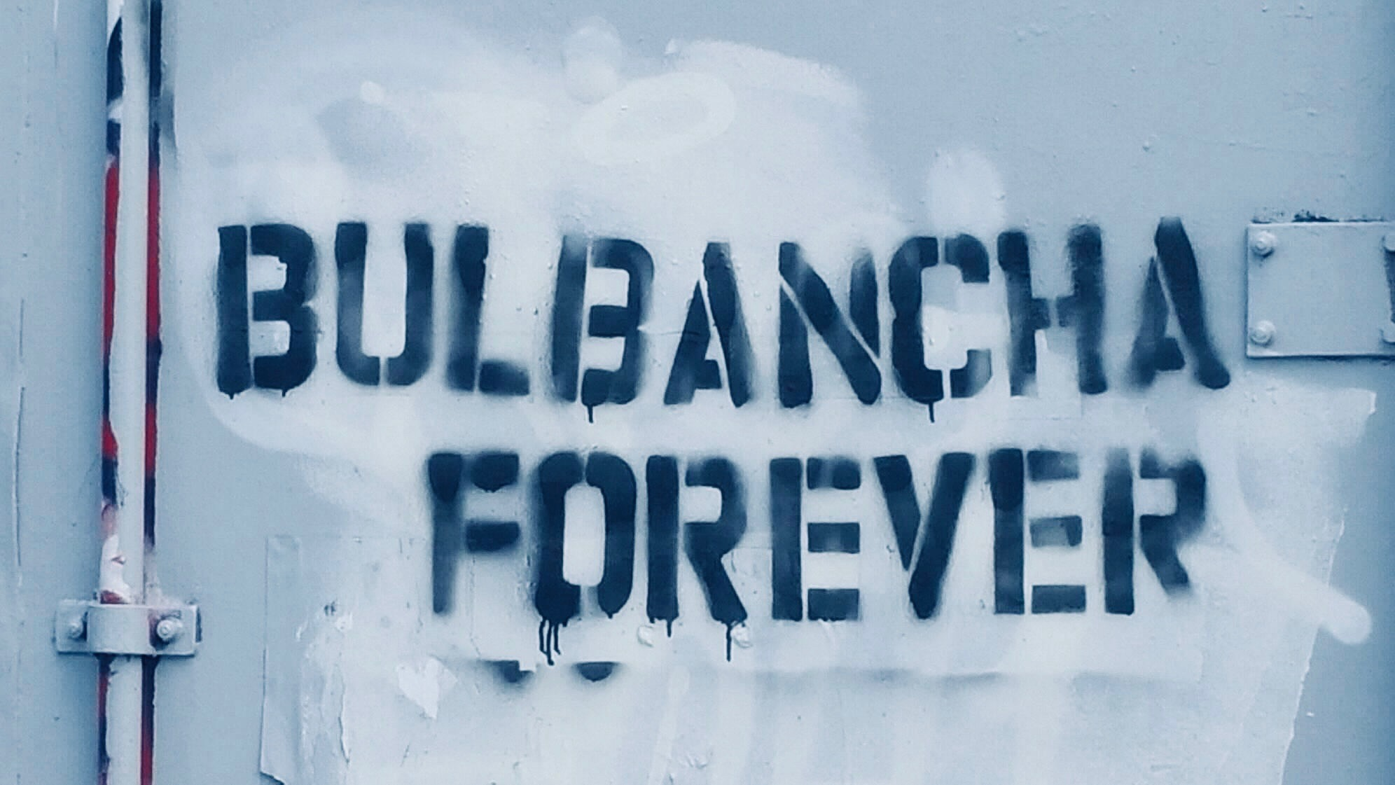 Bulbancha Forever: From NOLA to Minneapolis, a movement to revitalize Indigenous names grows